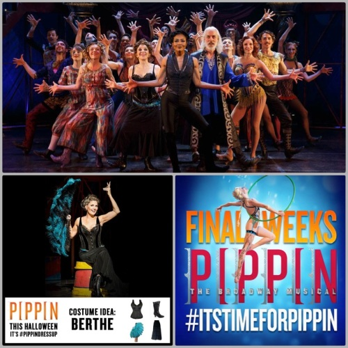 PIPPIN.collage